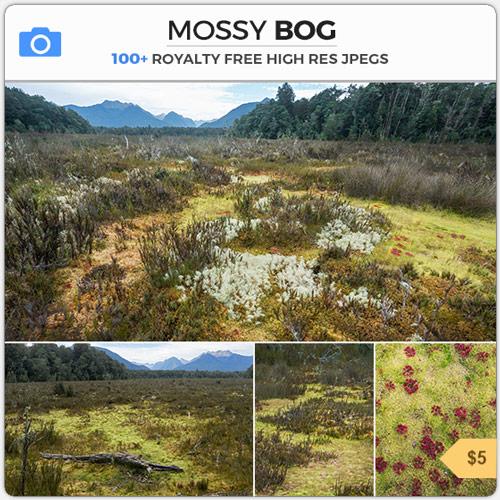 MossyBogSwampTextures