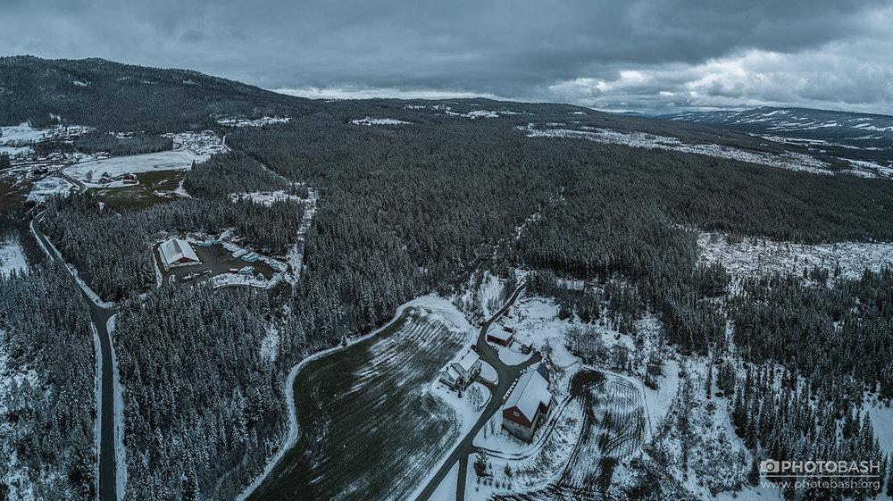 Nordic-Nature-(395).jpg