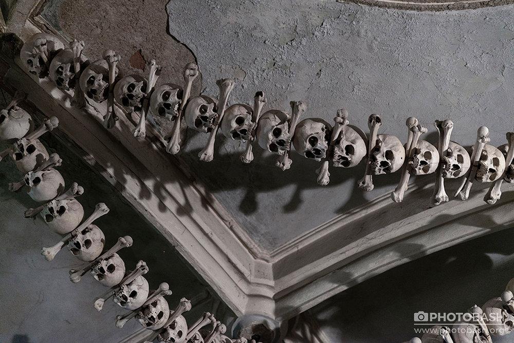 Bone-Crypt-Skull-Chain.jpg