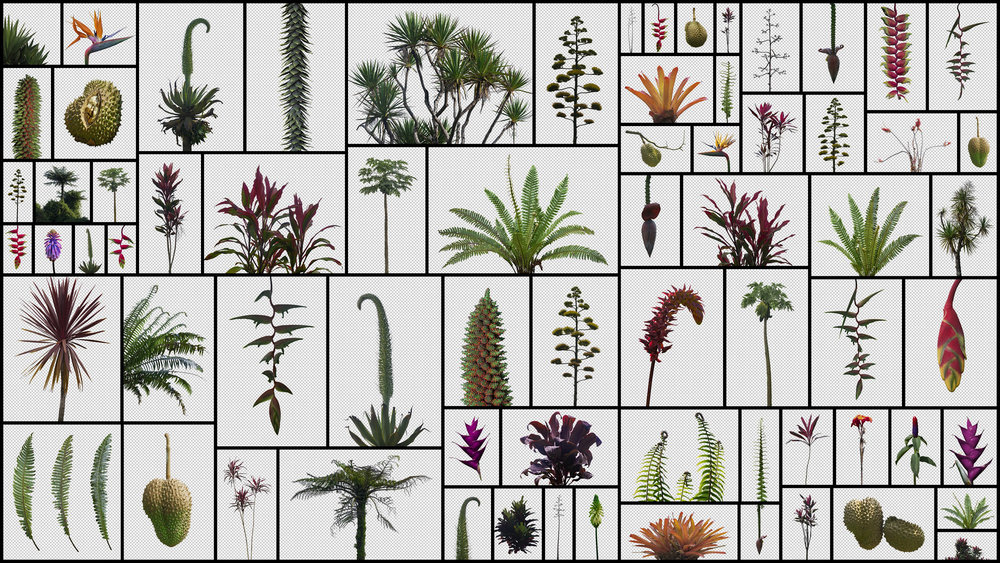 Prehistoric-Plants.jpg