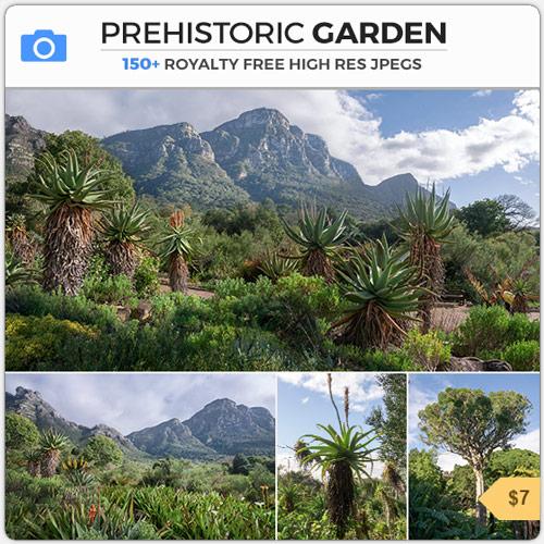 Prehistoric Garden Jurrasic South Africa Botanical Plants