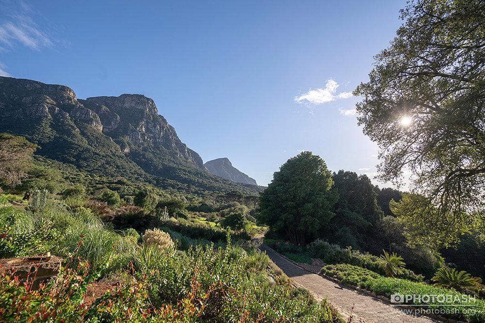 Prehistoric-Garden-Botanical-Path.jpg