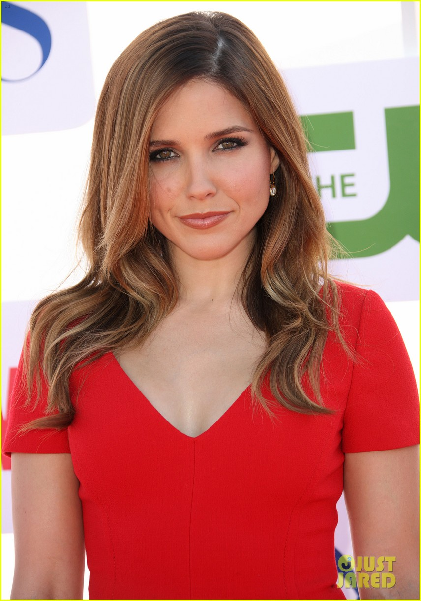 Sophia Bush nude (99 fotos), hacked Boobs, YouTube, butt 2019