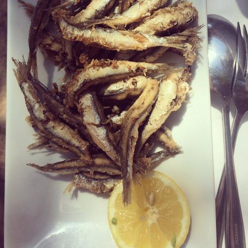 Amazing anchovies