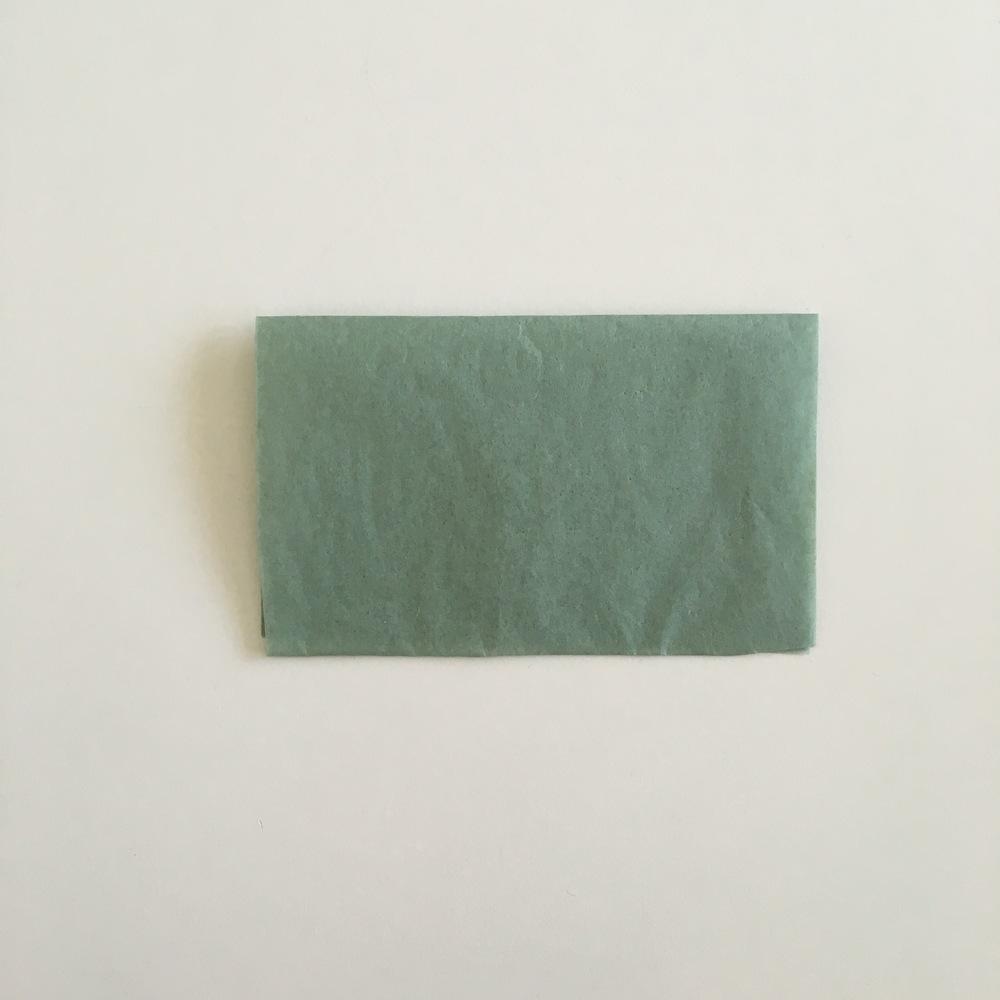 2. Fold it in half.