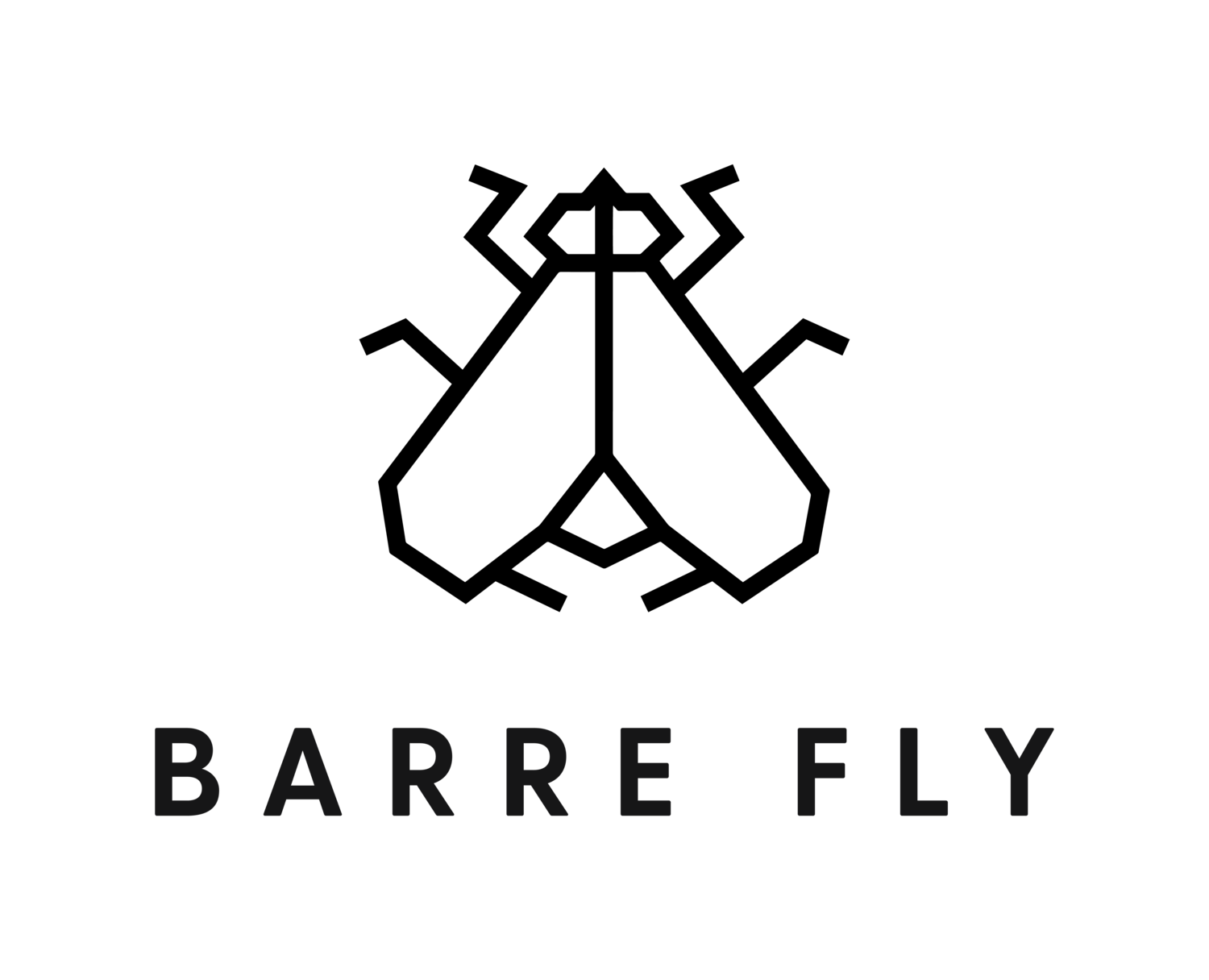 Barre Fly