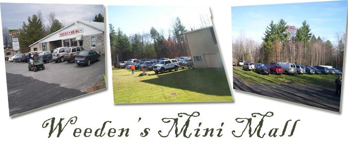 Mini Mall1.jpg