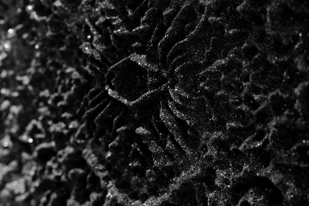 CoalDetail.jpg