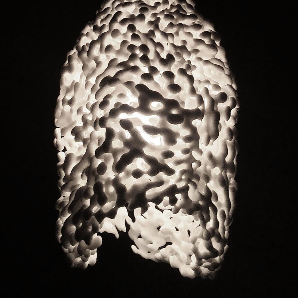 Cnidaria Lamp