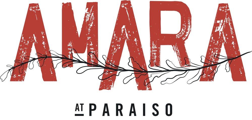 amara-logo-20170525.jpg
