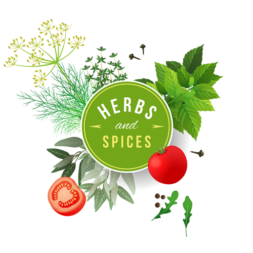 Refreshing-herbs-and-spices-vector-background-01.jpg