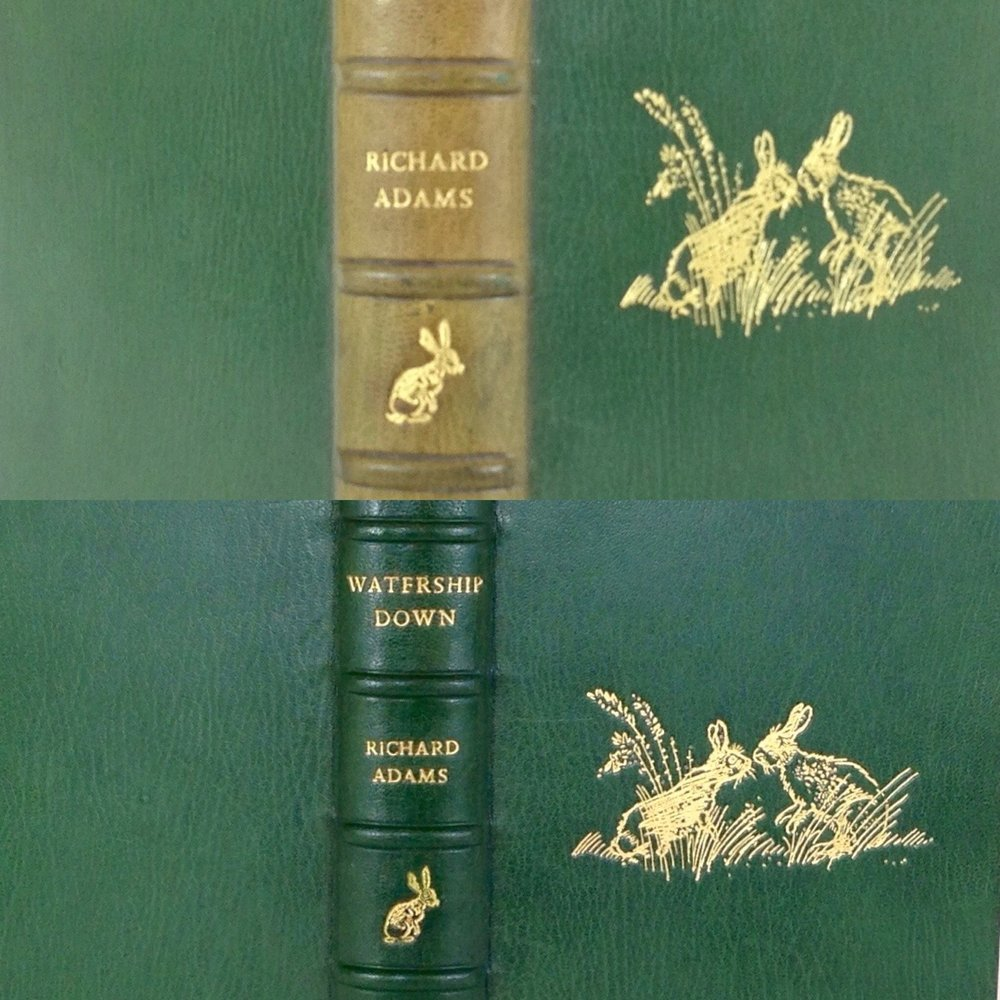 Copy of Restoration of a rare book