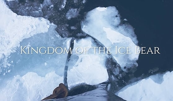 Kingdom of the Ice Bear – Movie Release