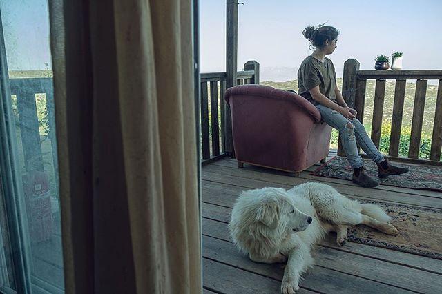 Home // July 2017 . . . . . . . . . #homeawayfromhome #home #israel #farmlife #dog #sammy #bestfriend #naomi #bffl #travel #familyfirst @naomie_benichou