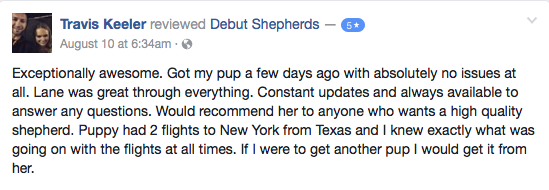 GSD Breeder Reviews