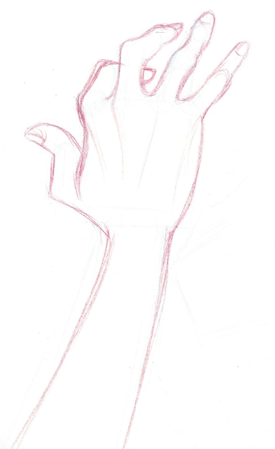 hand-sketch-iamo.jpg