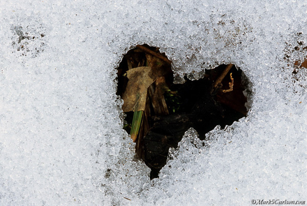 Snow melt heart shape; ©markscarlson.com