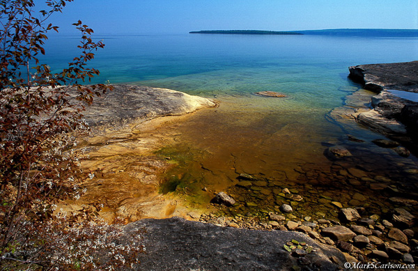 Shadbush, shallow cove, Lake Superior; ©markscarlson.com