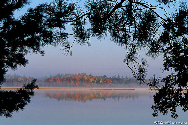 Lake Stella through evergreens, autumn; ©markscarlson.com