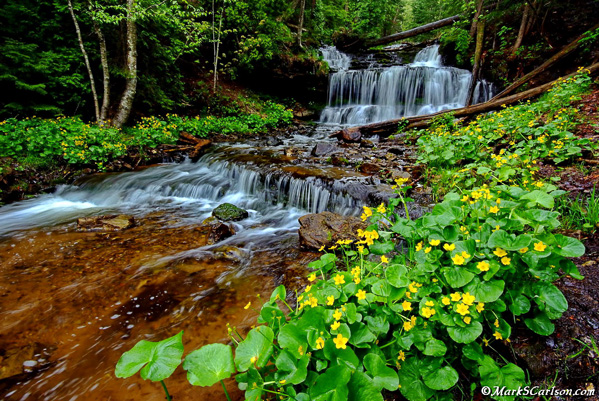 Wagner-Falls-spring