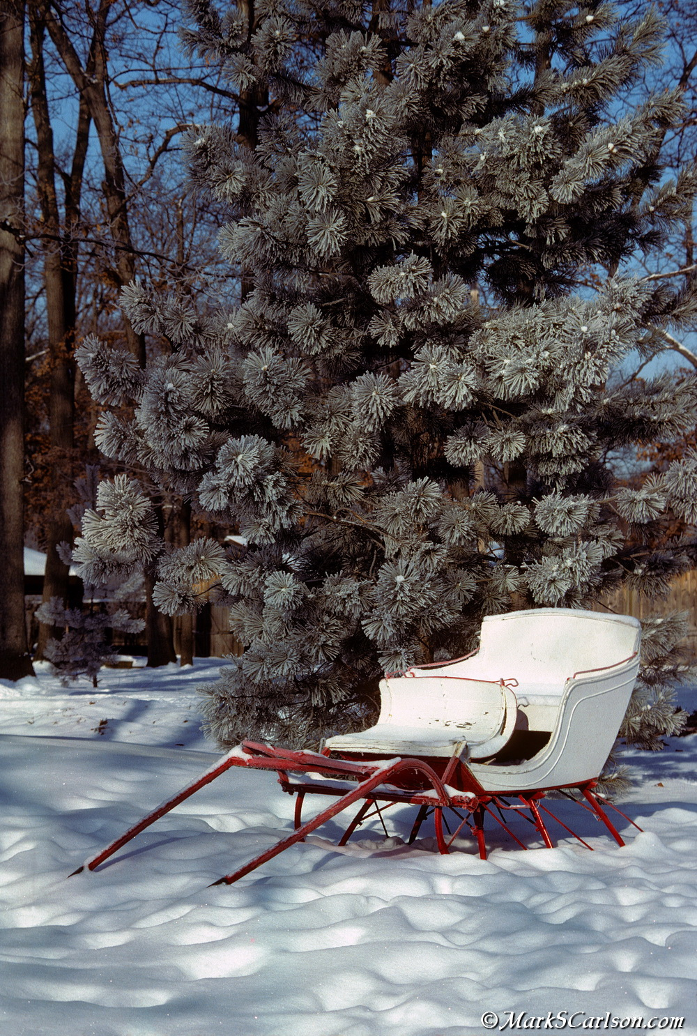 Cutter sleigh, frost pine_edited-1_resize.jpg