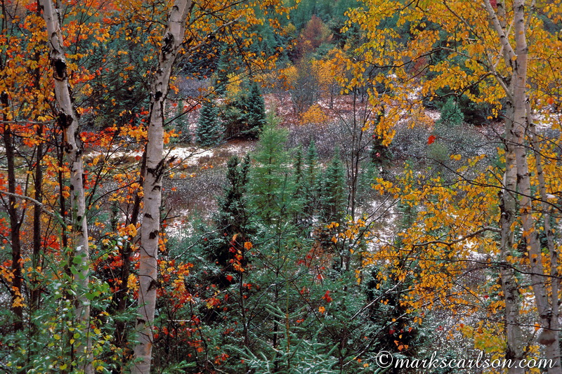 PBT001-Autumn snow, U.P. valley ©markscarlson.com