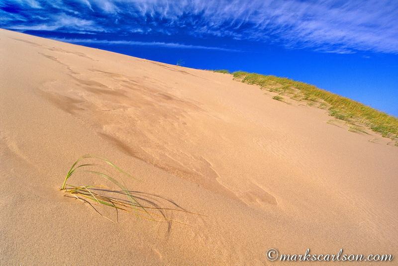 SBD030-Windswept Pyramid Dune ©markscarlson.com