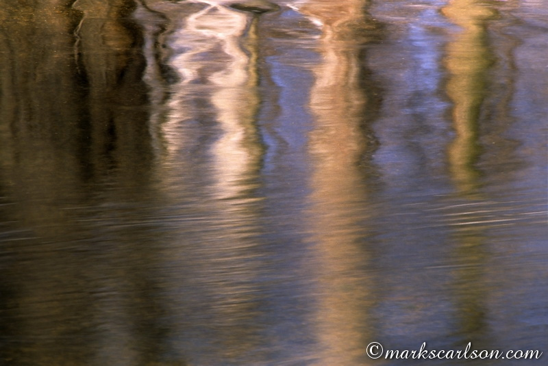 VP015-Tree trunk reflections in river ©markscarlson.com