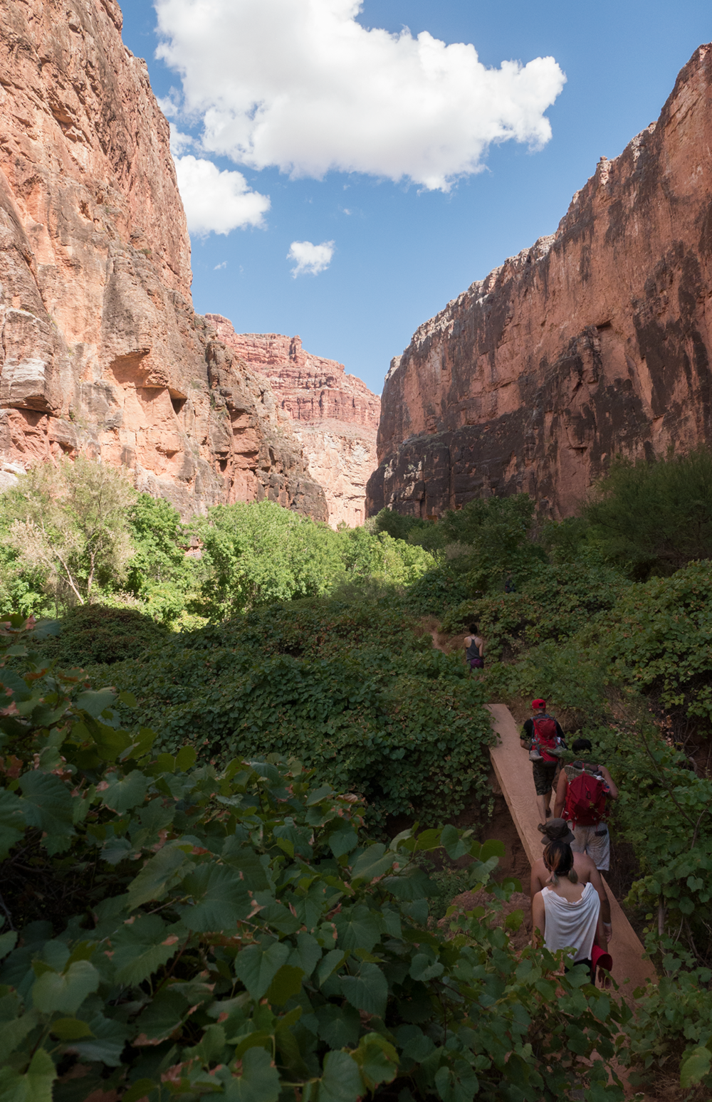 Hoang M Nguyen with friends hiking through Havasupai Arizona