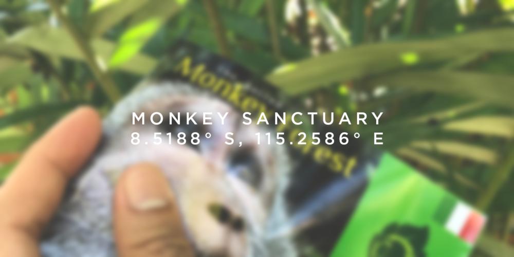ubud_hoboworld_hoang-m-nguyen-monkey-sanctuary-bali
