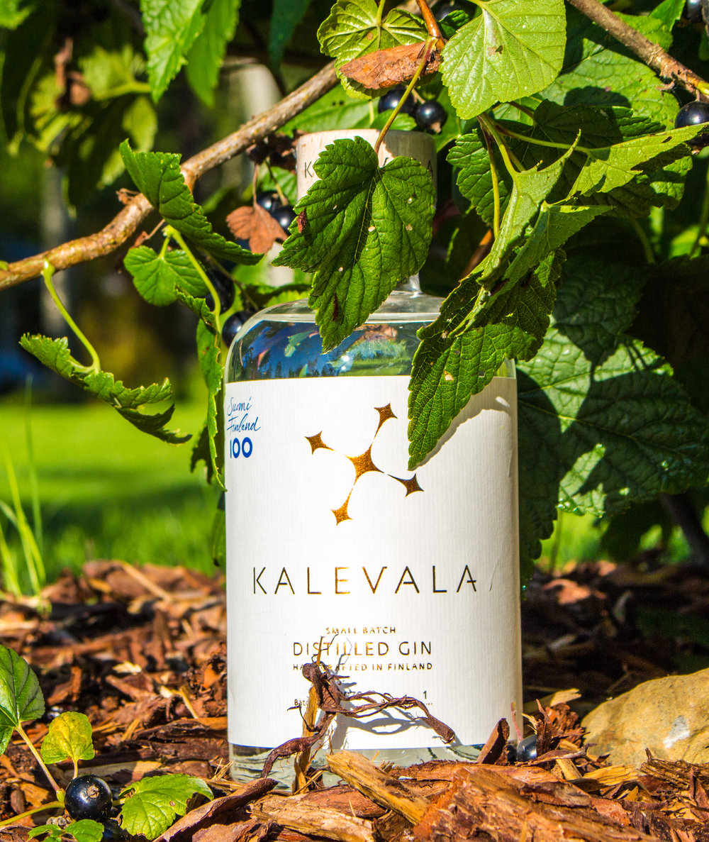 Batch L0071: Did you know that our Dry Distilled variety includes Blackcurrant?