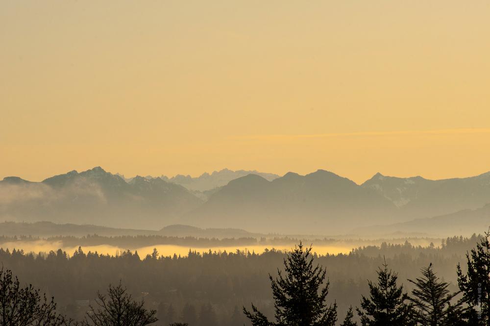 Cascades Dawn