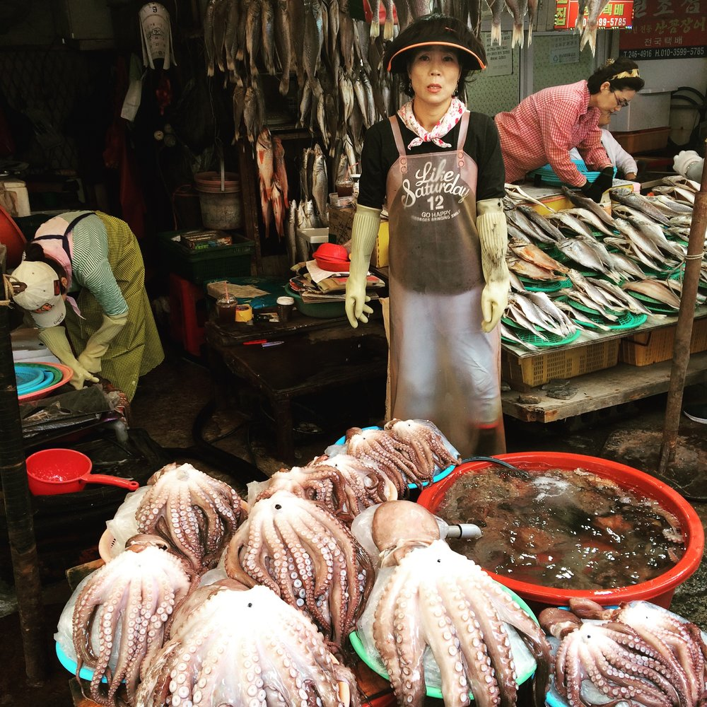 Octopus seller in Jalgachi Market, Busan  부산 자갈치시장