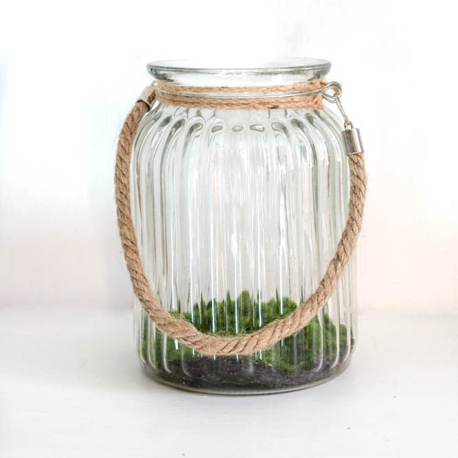 Ribbed Glass Jar - Great as an addition to your centre pieces. Fill them with moss, leaves, fairly lights or a big candle.