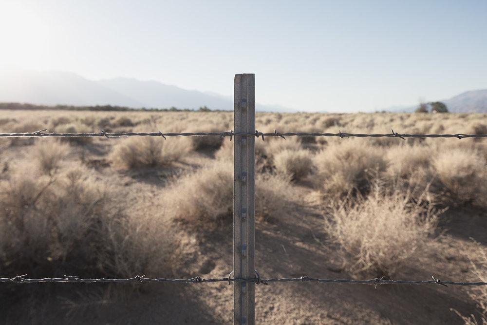 Image title:    Fence    (Manzanar, CA)