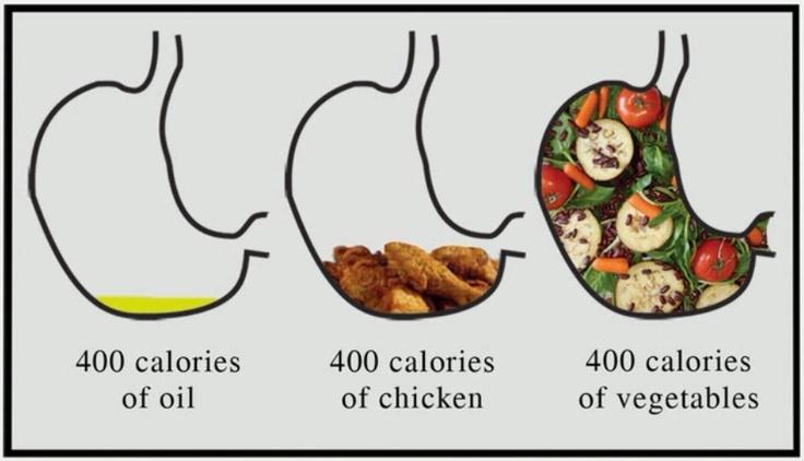 400 calories visual
