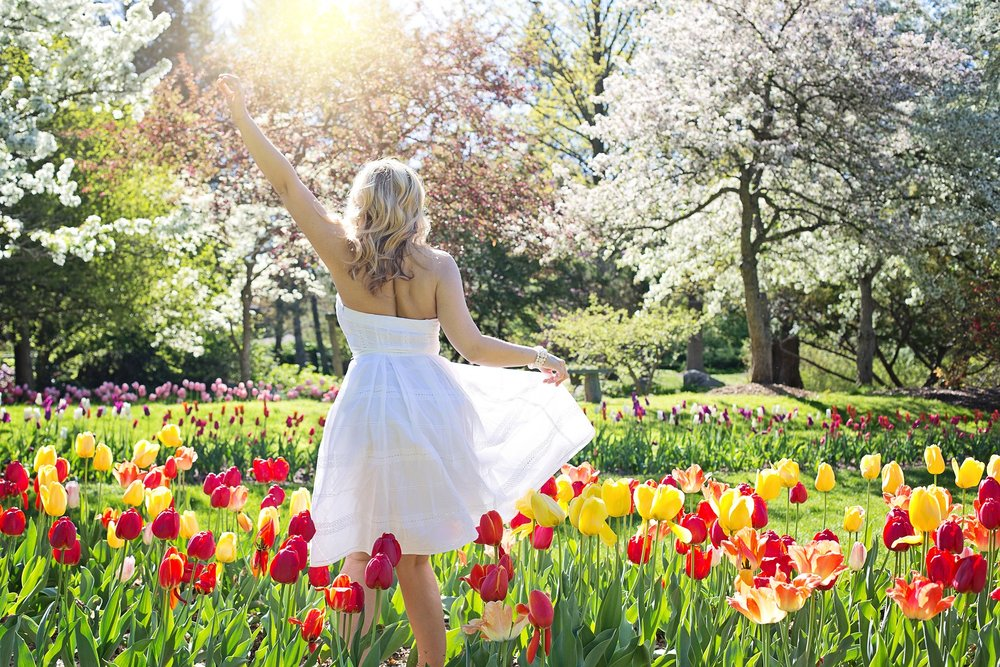 spring-2298285_1920.jpg