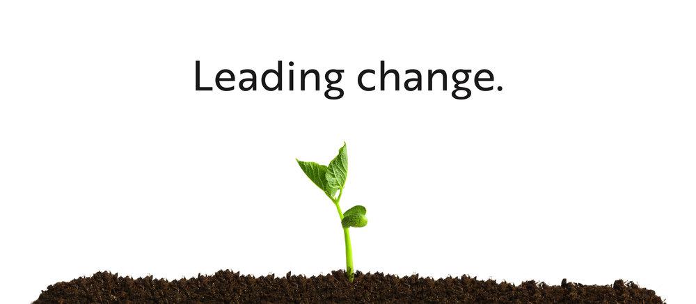 leadingchange7.jpg