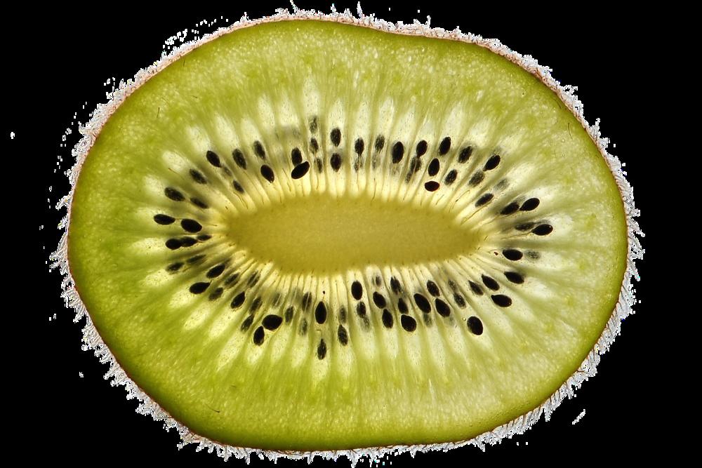 kiwi-free-2673038_1280.png