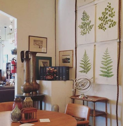 The fern prints as displayed in our showroom with rope and rod.