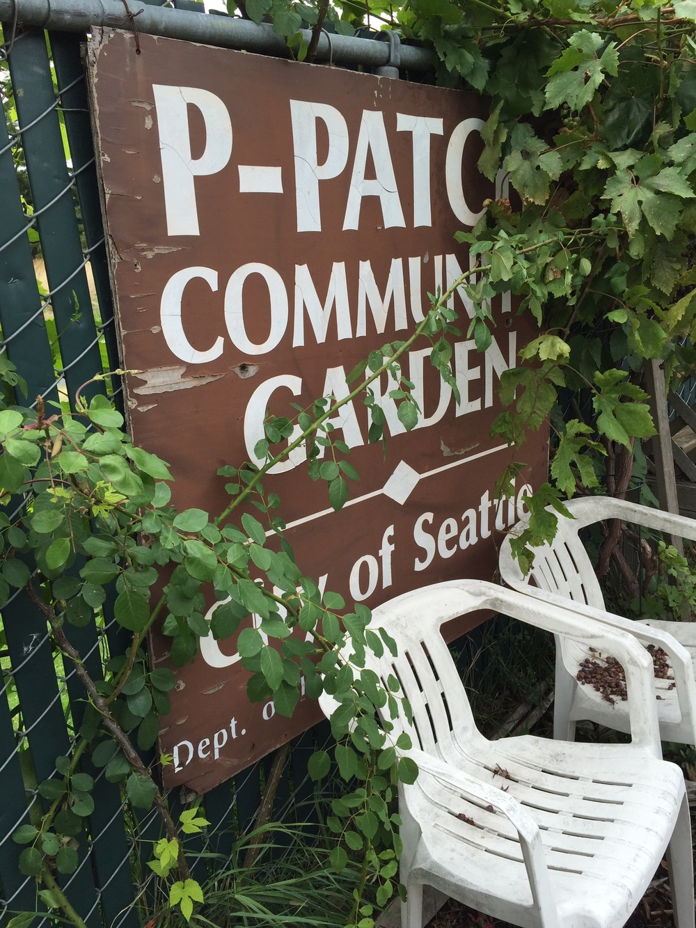 Falling in love with community gardens
