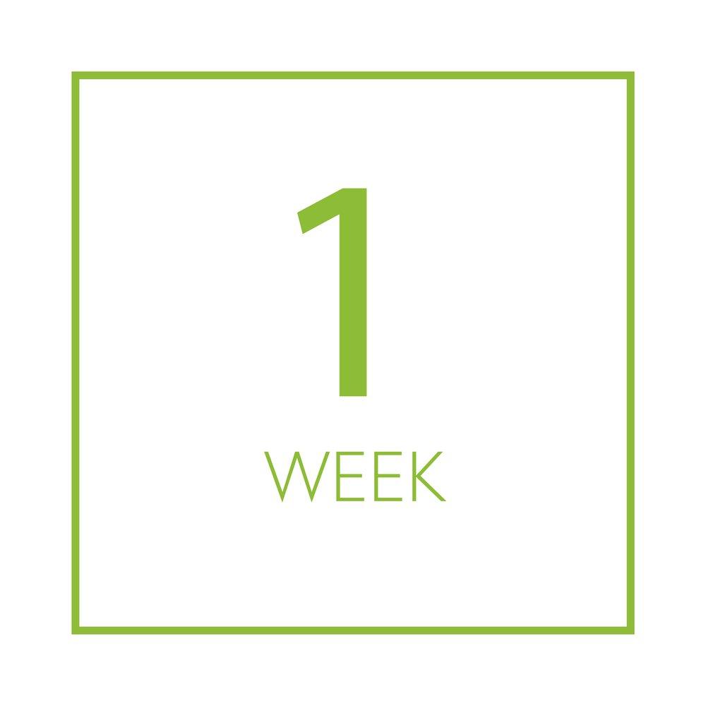 1 week.jpg