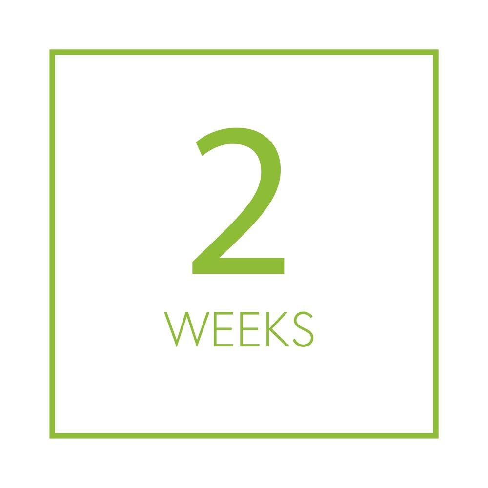 2 weeks.jpg