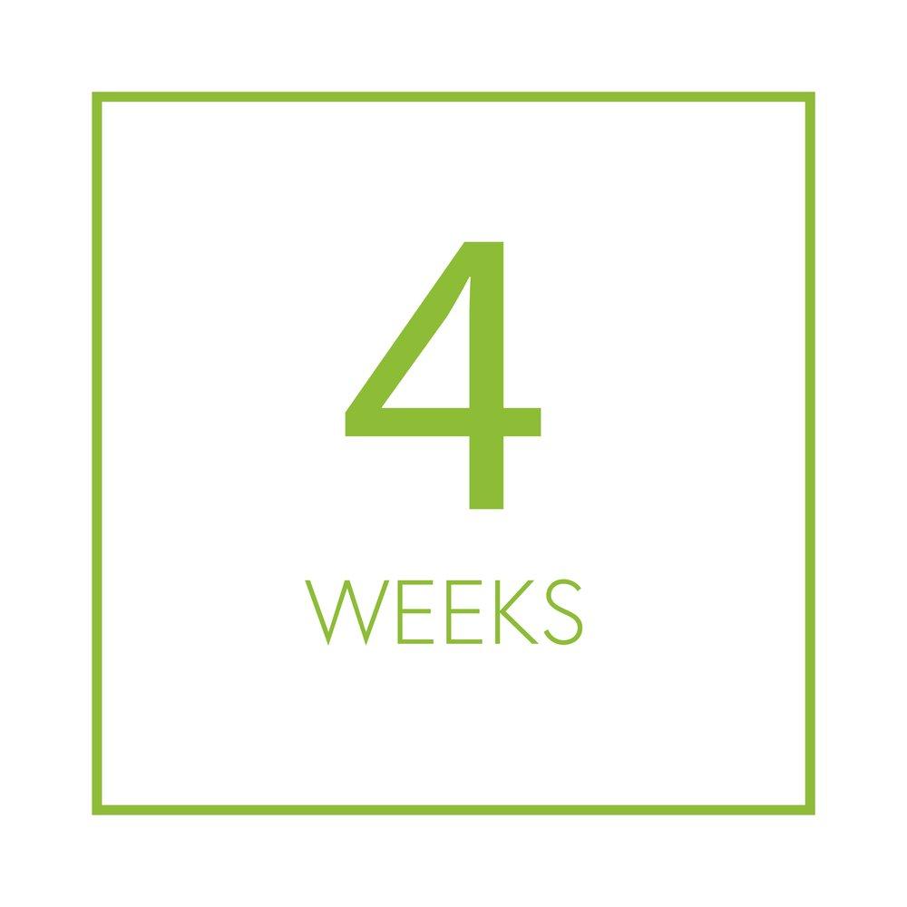 4 weeks.jpg