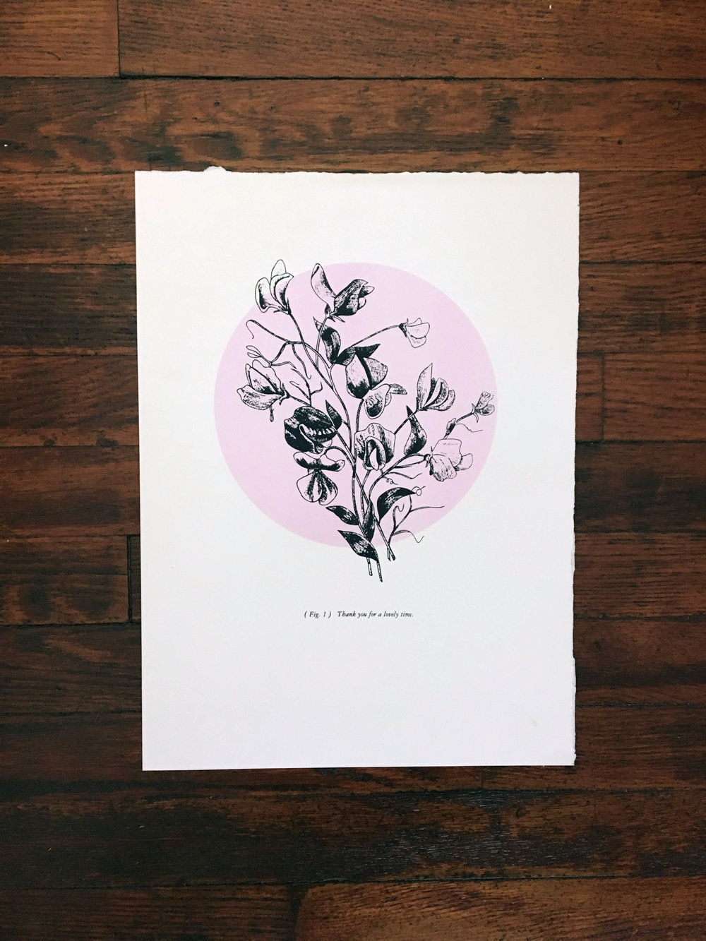 (Fig. 1) Thank you for a lovely time. A series exploring and depicting women's feminine side through color and delicate floral imagery, which is contrasted with a sarcastic/bold statement. The series is ironic in that sense and is meant to make the viewer question what femininity is to them and how they express it.