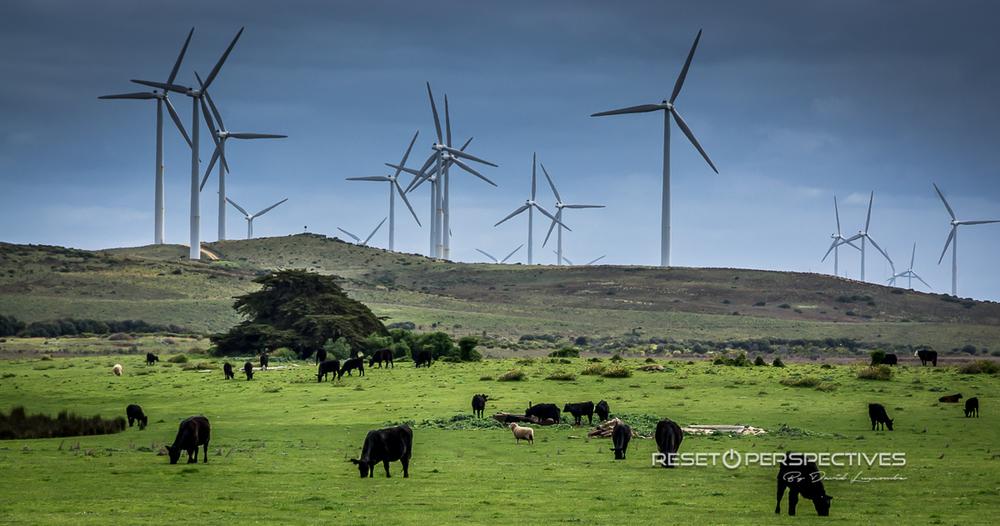 Portland Wind farm.