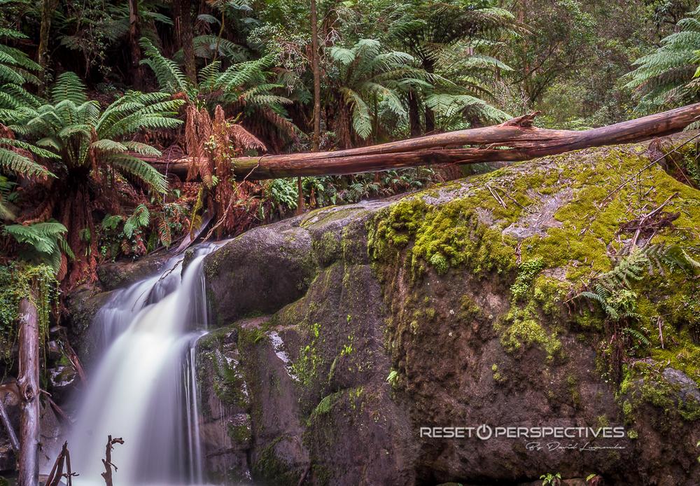 Tooronga Falls