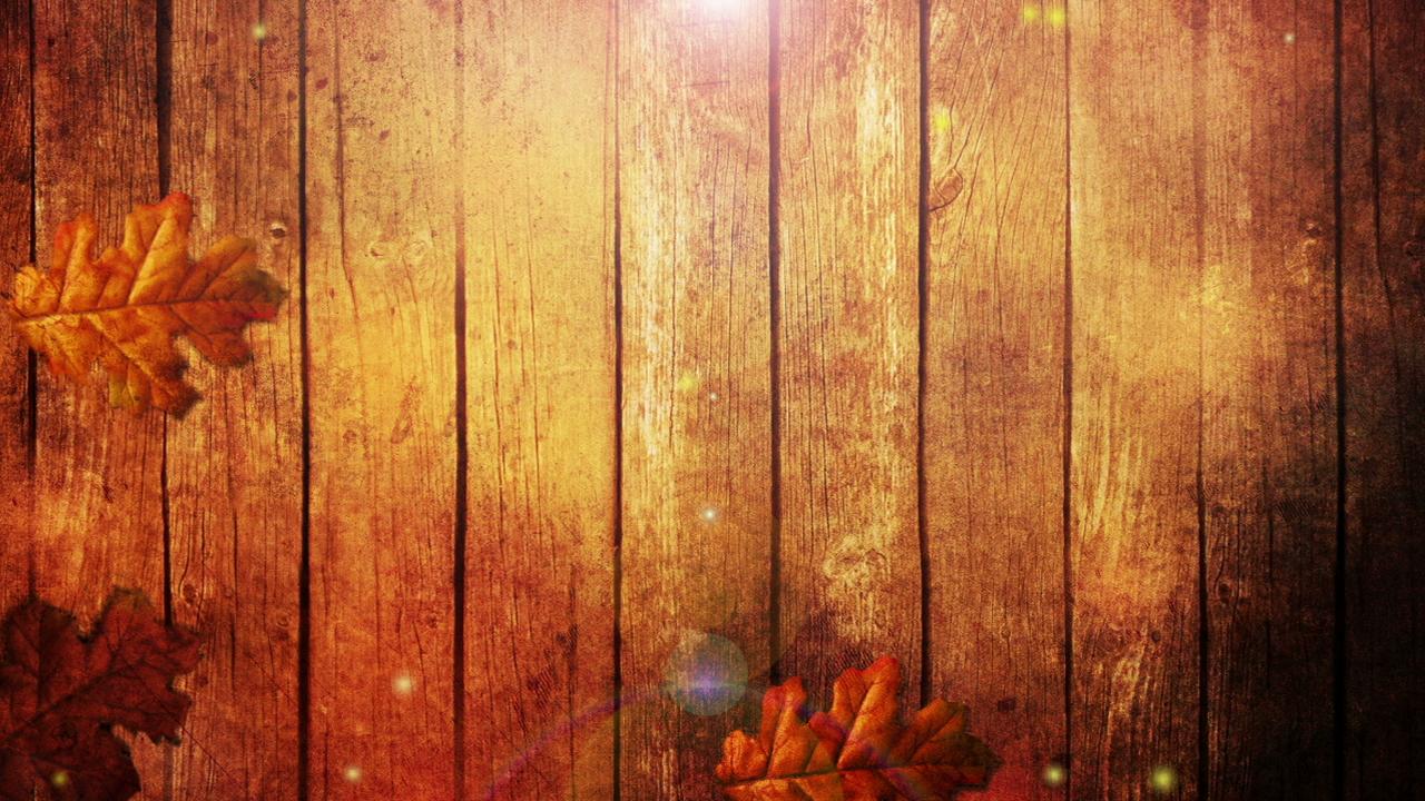 how does a turkey feel on thanksgiving? \u2014 blaze educationhow does a turkey feel on thanksgiving?