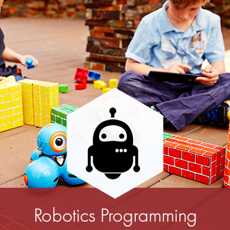 Robotics Programming Icon.jpg