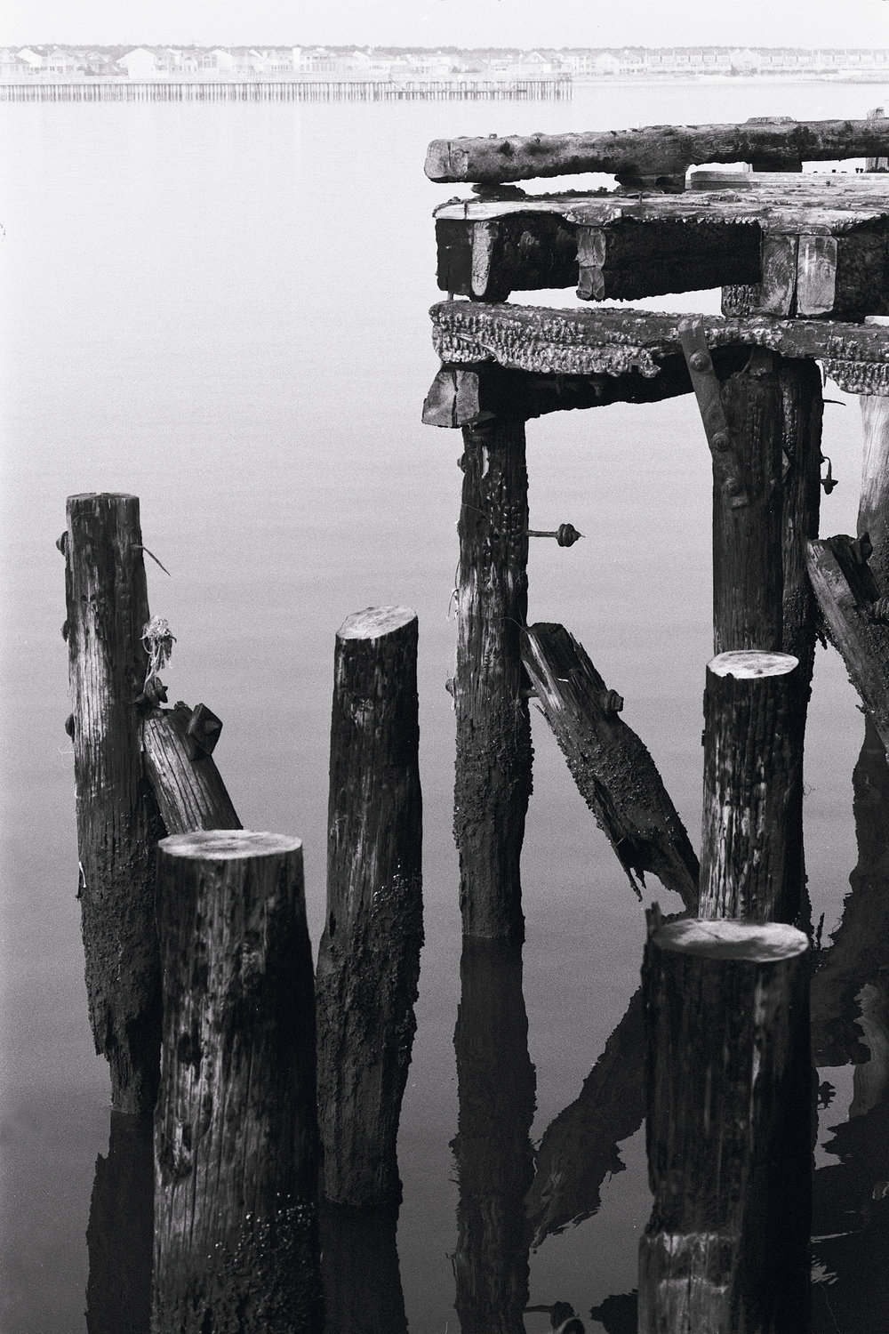 Abandoned Pier #1